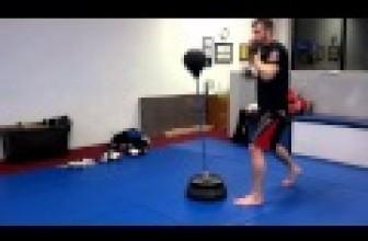 Sparbar – Amazing Boxing Reflex skills