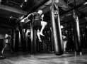 Punching Bag Guide : All About Punching Bags